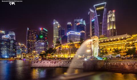 società ltd Singapore