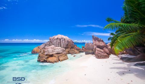 Le isole Seychelles: un paradiso fiscale