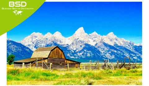 Paradisi fiscali americani: vantaggi del Wyoming